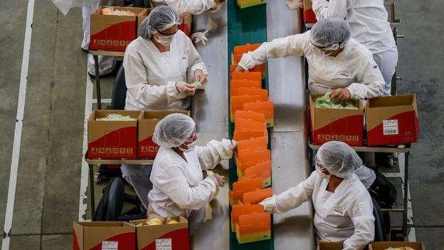 Fábrica da Natura; empresa cresceu com aposta em valorização ambiental (Foto: Direito de imagemCARLOS BORGES/DIVULGAÇÃO)