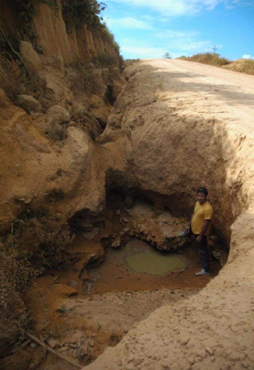 Voçaroca com mais de sete metros encontrada em Rondônia  — Foto: Fabiana Gomes/ Arquivo Pessoal