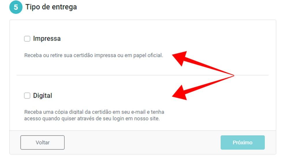 Escolha a maneira de obtenção do documento — Foto: Reprodução/Paulo Alves