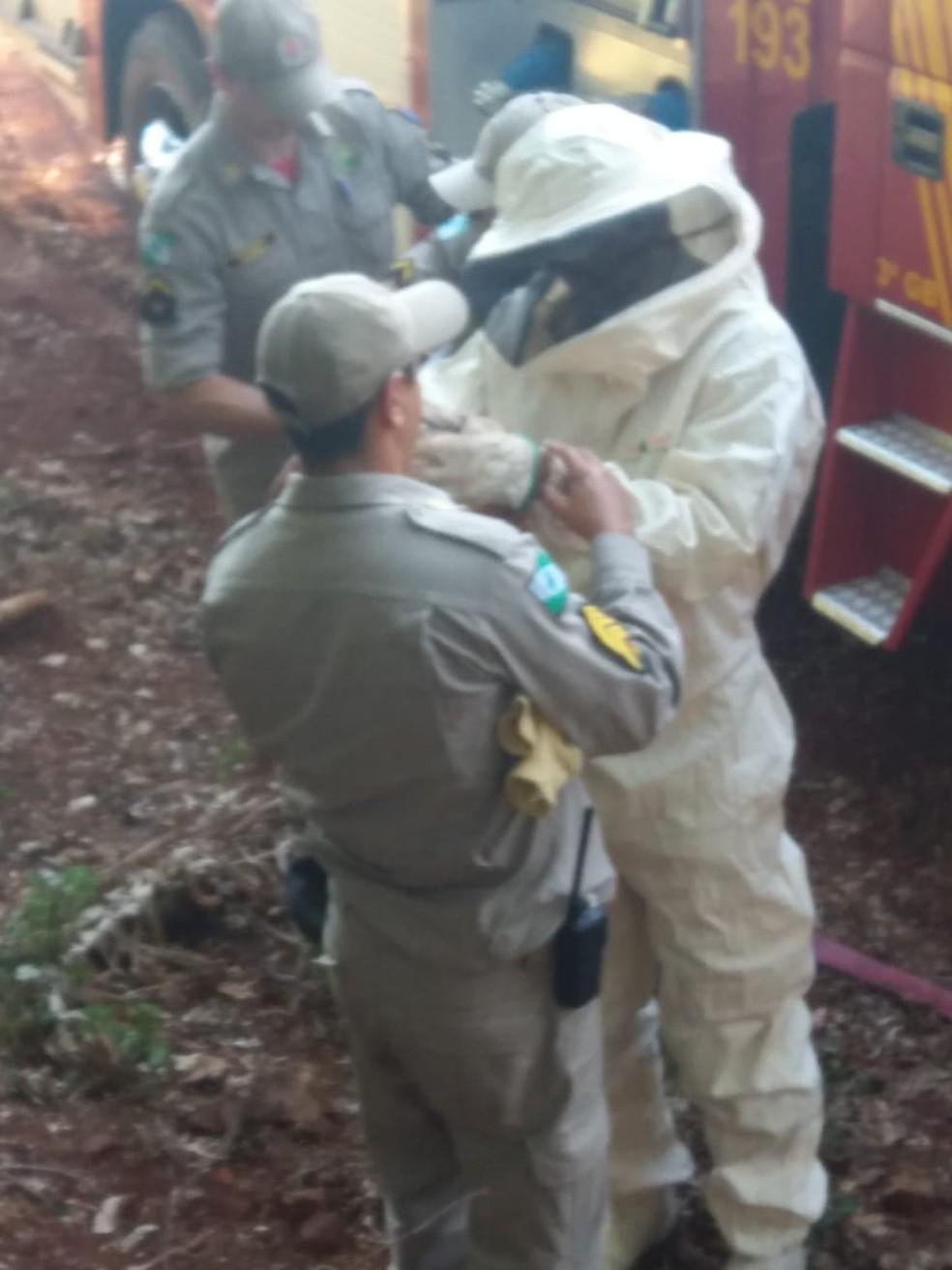 Bombeiros utilizaram roupa especial para fazer o resgate — Foto: Corpo de Bombeiros/Divulgação
