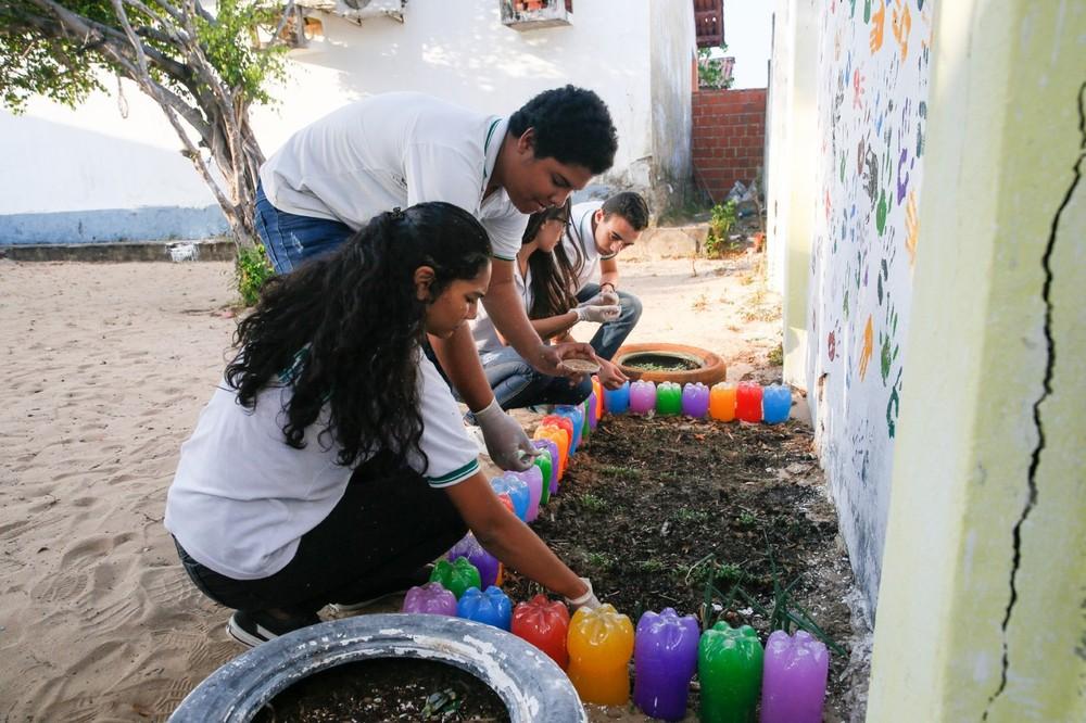 Projeto retém água no solo e colabora com a fertilização em ambientes secos — Foto: Kid Junior/SVM