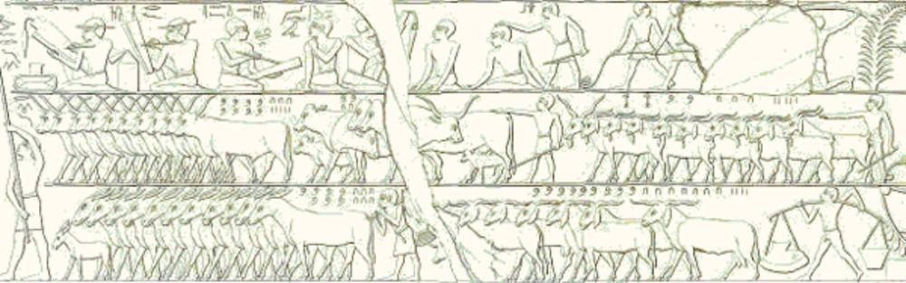 Cena de uma contagem de gado (copiada pelo egiptólogo Lepsius) (Foto: Wikimedia Commons)