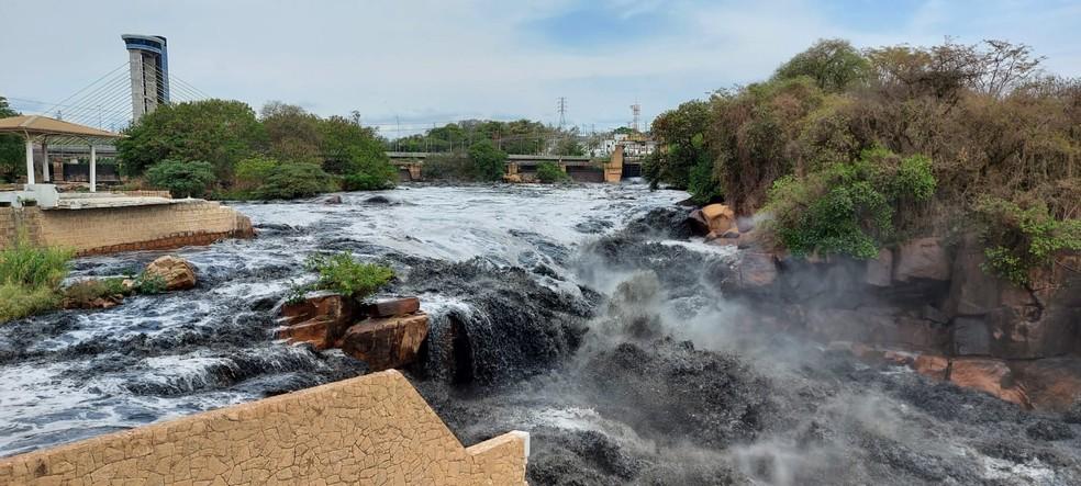 Trecho do Rio Tietê em Salto — Foto: Willian Silva/TV TEM