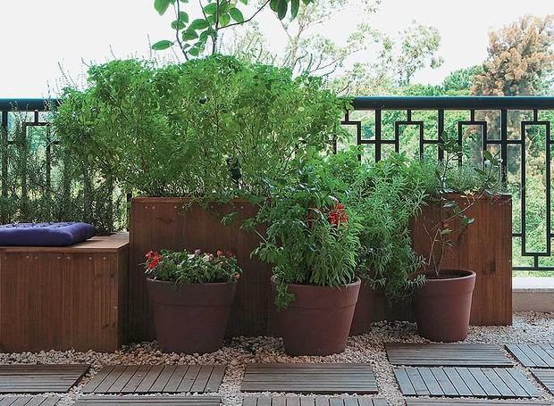 A varanda com jeito de jardim é exatamente o que a moradora deste apartamento queria: aconchegante, com plantas e temperos frescos sempre à mão. O paisagista Roberto Riscala fez um projeto com diversas caixas de pínus. Há manjericão e alecrim (Foto: Célia Weiss/Casa e Jardim)
