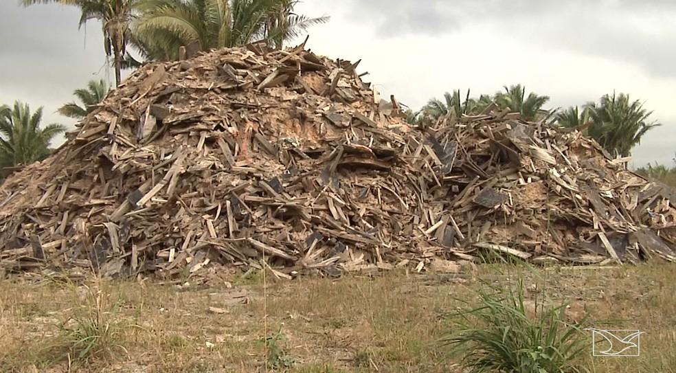 Terreno contaminado fica na zona rural de Alto Alegre do Pindaré (Foto: Reprodução/TV Mirante)
