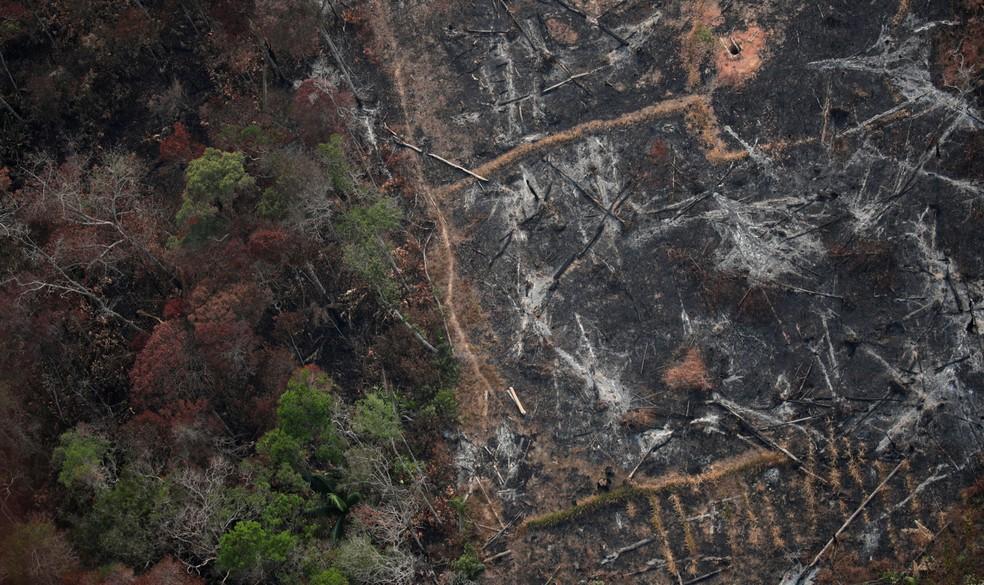 Foto aérea mostra uma parcela desmatada da Amazônia perto de Porto Velho — Foto: Ueslei Marcelino/Reuters