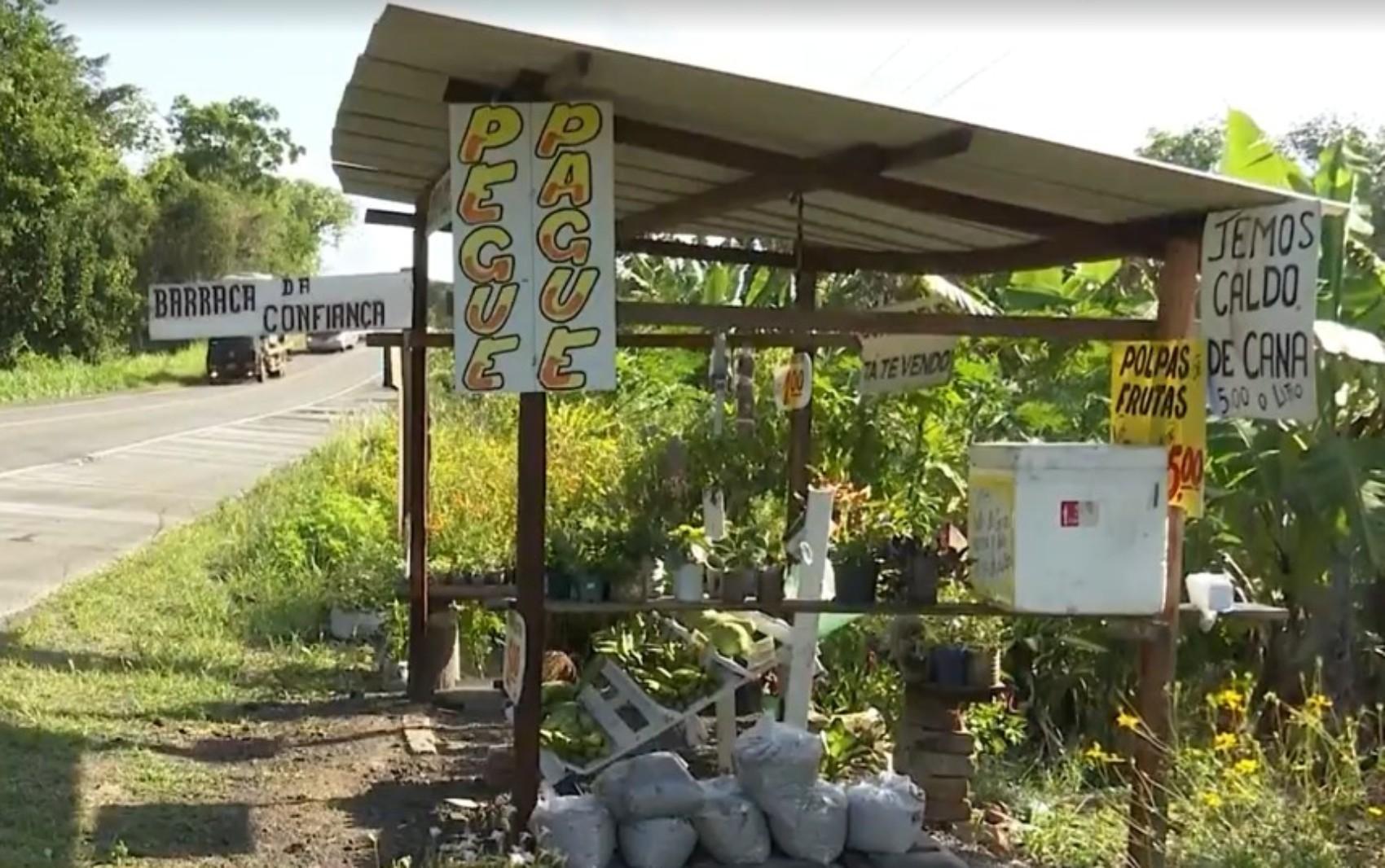 Agricultora cria 'barraca da confiança' às margens de rodovia na BA; clientes realizam todo o processo de compra sozinhos