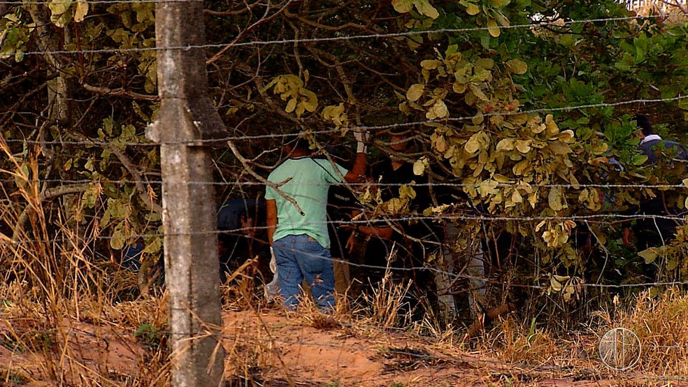 Corpo foi encontrado enquanto militares apagavam chama em terreno do bairro Planalto, em Natal — Foto: Reprodução/Corpo de Bombeiros