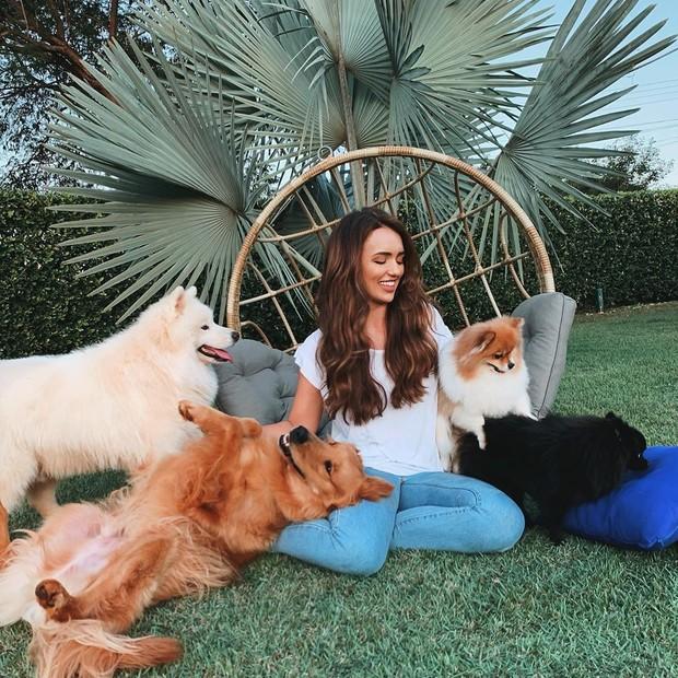 Rafa Kalimann e seus cachorros (Foto: Reprodução Instagram)
