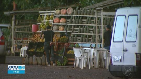 Concessionária pede saída de barracas de frutas que funcionam há 50 anos ao lado de rodovia