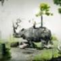 Papel de Parede: Rinoceronte