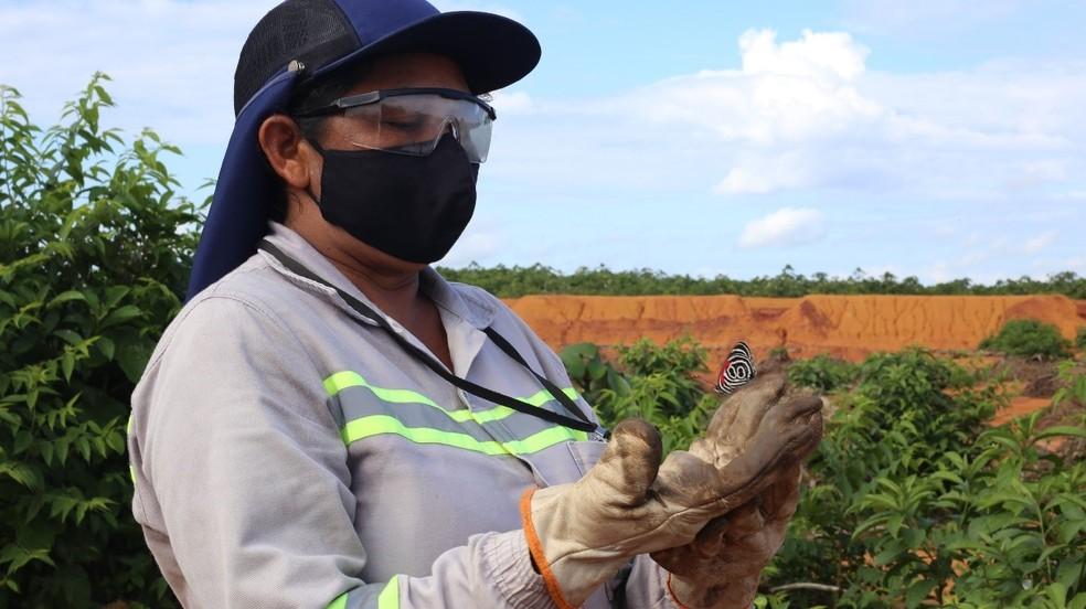 Cleide Xavier está há quatro anos trabalhando no replantio de árvores na Alcoa.— Foto: Alcoa