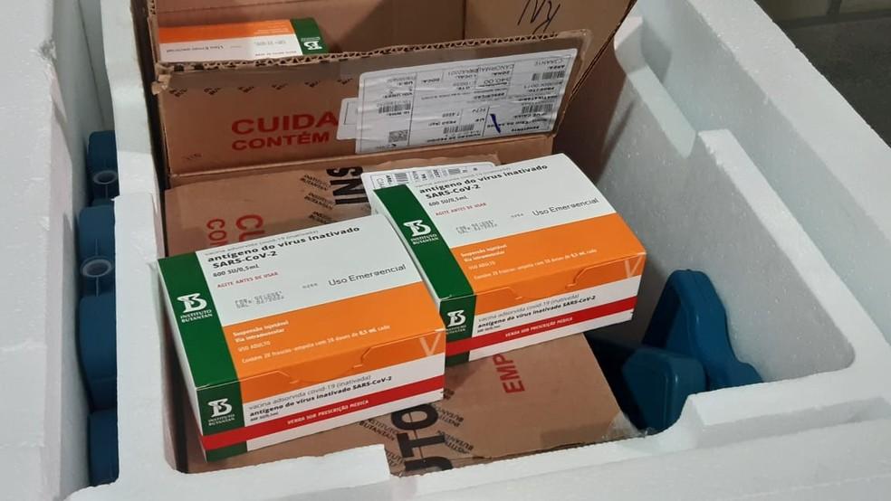 Vacina CoronaVac doses frascos Natal RN Covid-19  — Foto: Sérgio Henrique Santos/Inter TV Cabugi