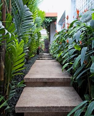 Como valorizar o corredor com plantas