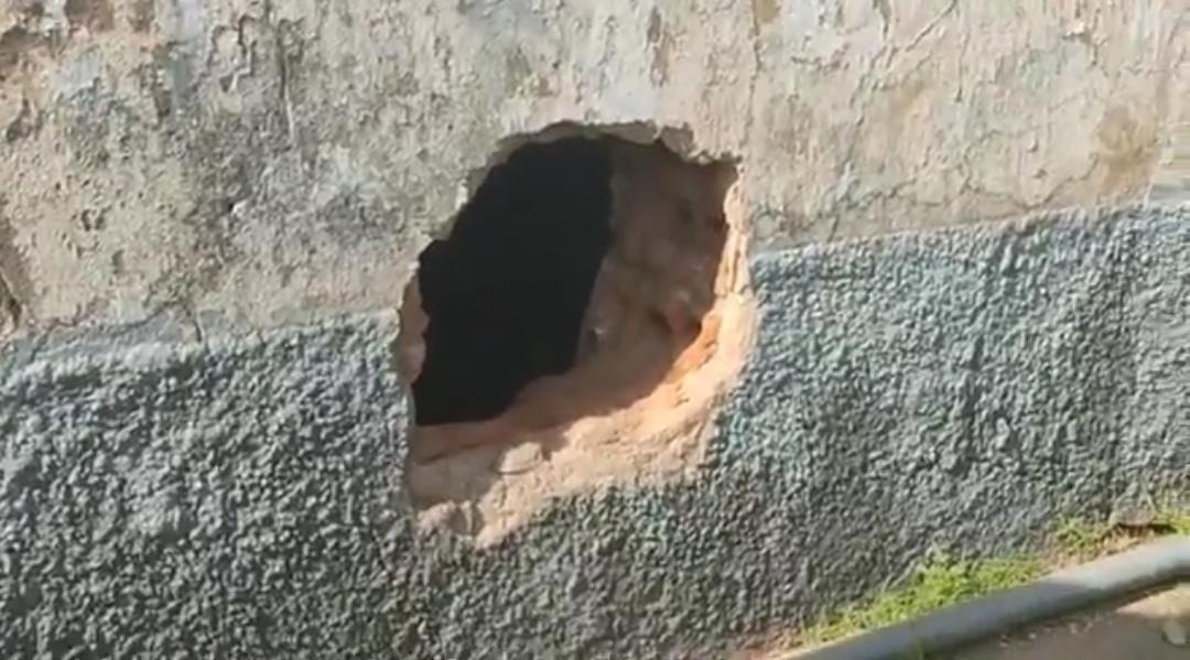 Polícia recaptura suspeito de tráfico de drogas em área de mata no município de Monte Alegre