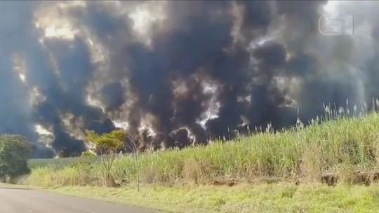 Queimadas atingem áreas rurais às margens de vicinais no Centro-Oeste Paulista; vídeo