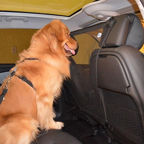 Tela de proteção para pet (Foto: Divulgação/Zen Animal)