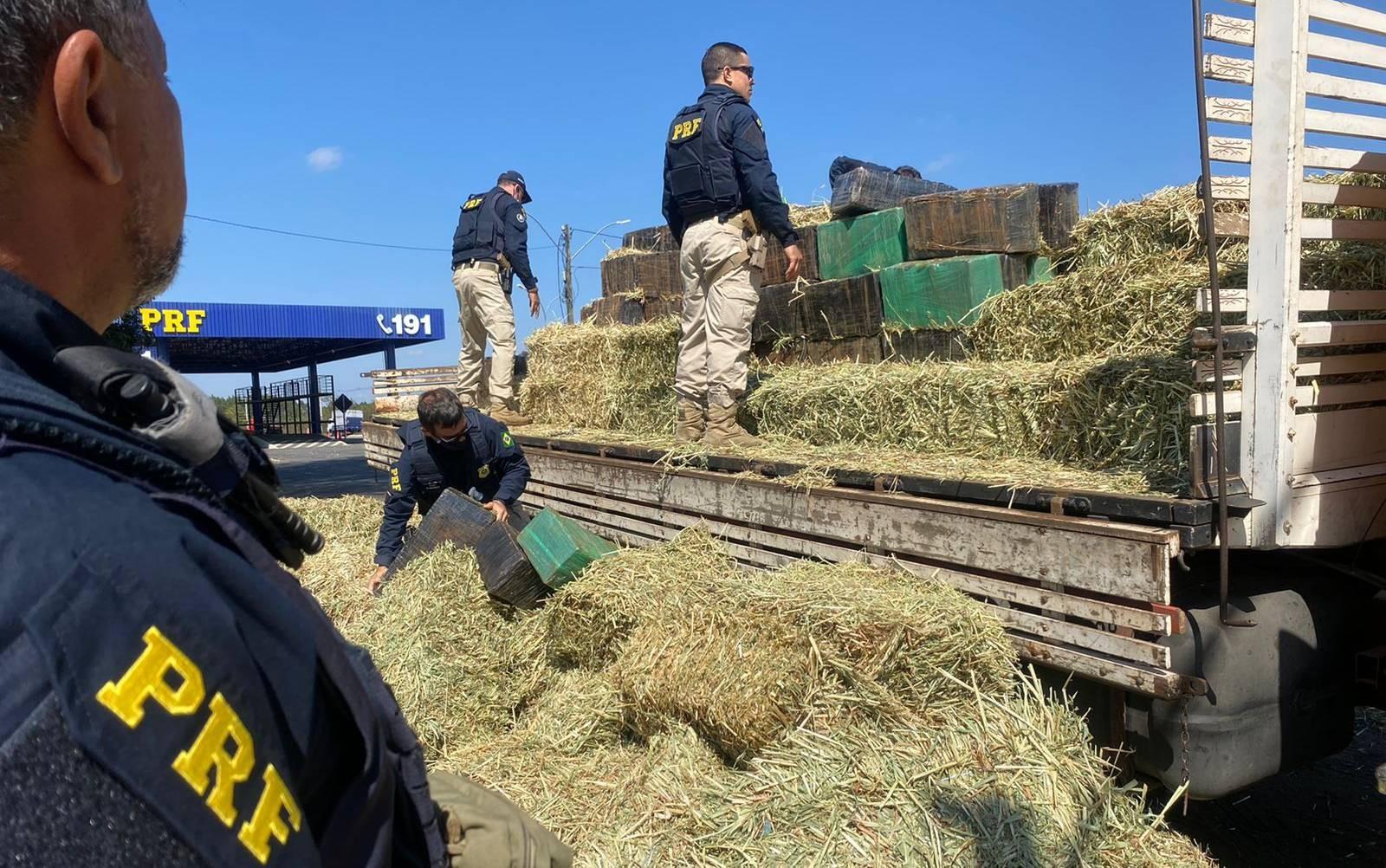 Polícia incinera quase três toneladas de maconha encontrada em carga de feno no sudoeste do estado