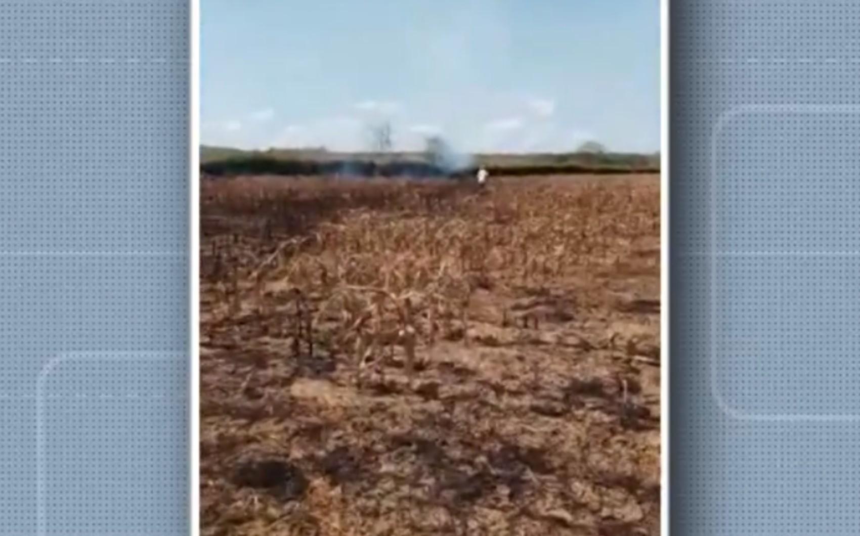 Incêndio destrói plantação de milho na zona rural de Fátima, no nordeste da Bahia
