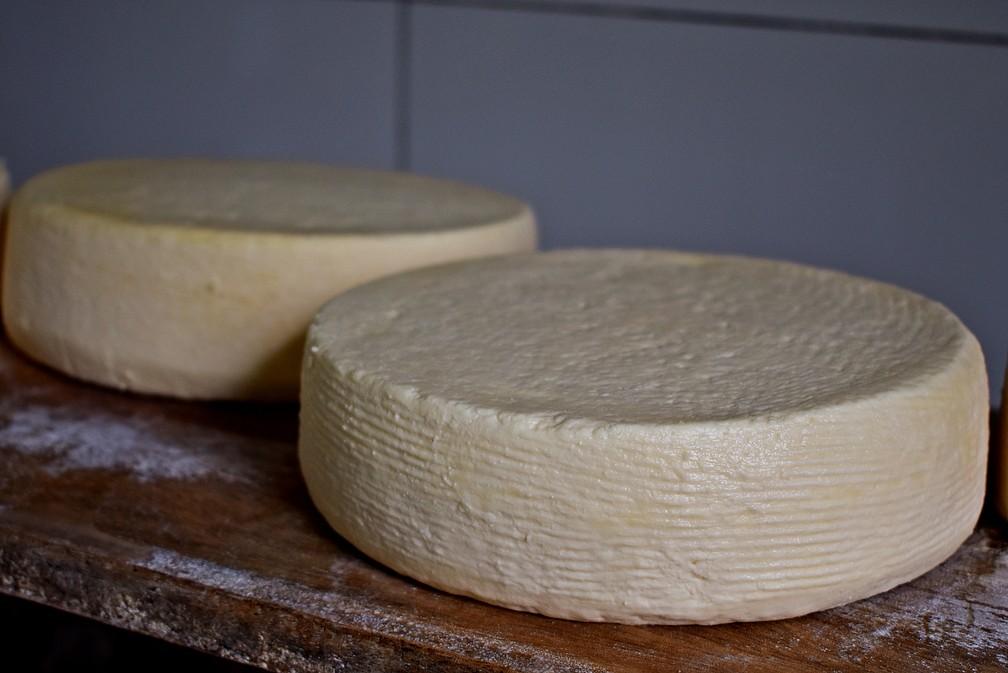 queijo artesanal3 - Proteínas, minerais e vitaminas: queijo traz benefícios para saúde, mas exige cuidados