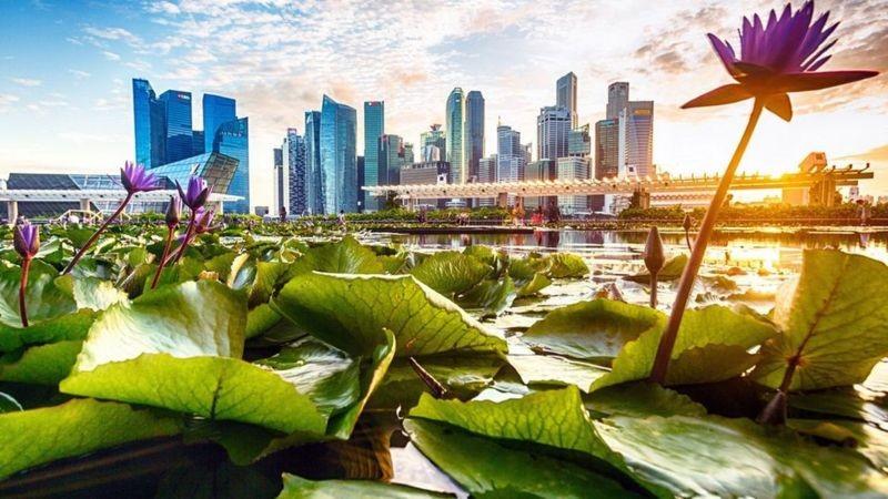 A cidade asiática obcecada com a limpeza thumbnail