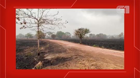 Chuva no Pantanal de MS acaba com muitos focos de fogo em fazenda e bombeiro fala em encerrar combate