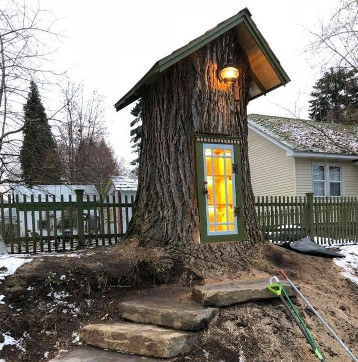 Árvore de 110 anos agora serve como mini biblioteca nos EUA (Foto: Divulgação)