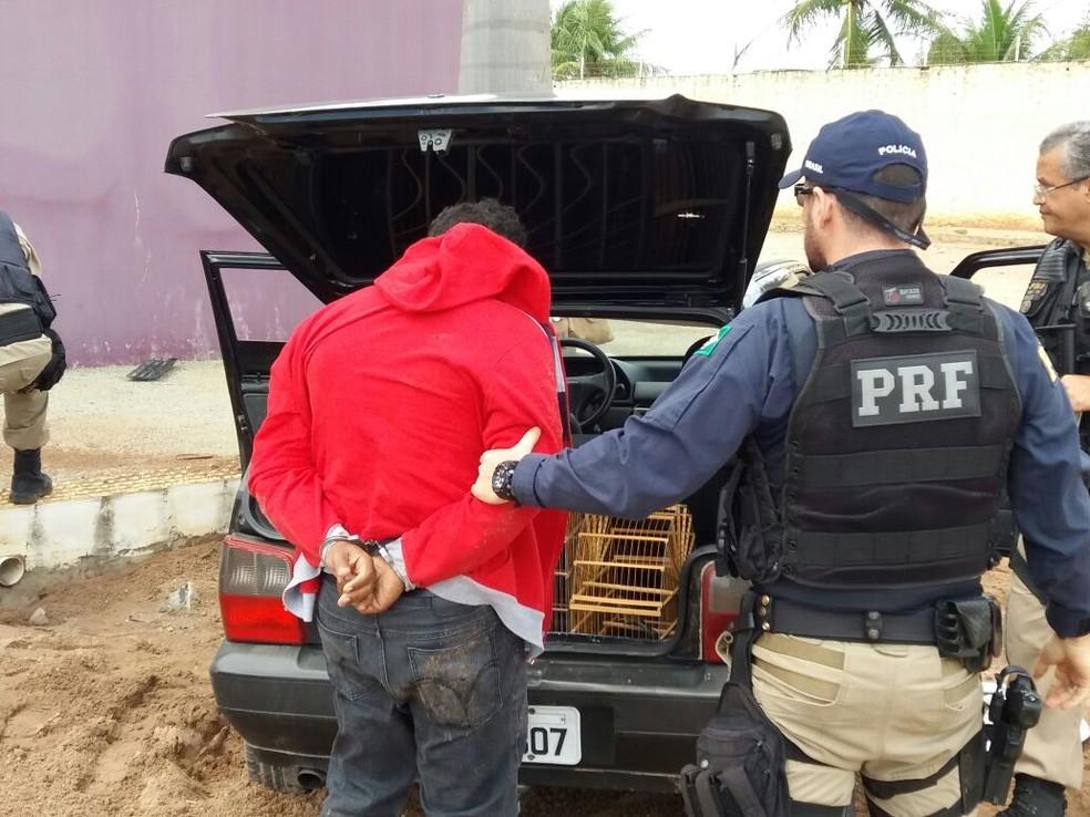 Suspeito que levava os pássaros silvestres no carro foi preso pela PRF (Foto: Divulgação/PRF)