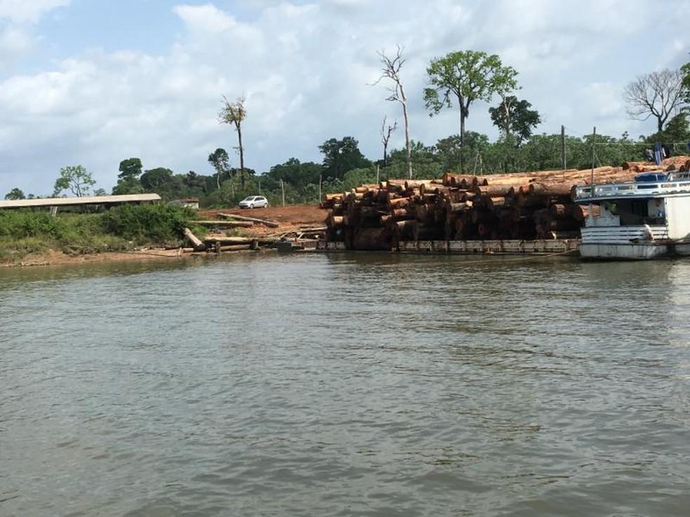 balsa 3 - Operação apreende balsas e rebocadores usados no transporte ilegal de 1000 m³ de madeira, no PA
