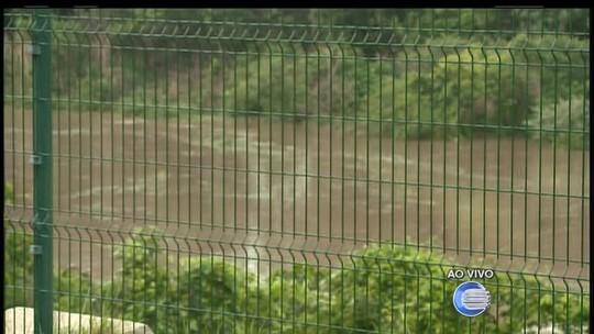 Peixes mortos surgem em rio e Semar investiga suspeita de crime ambiental