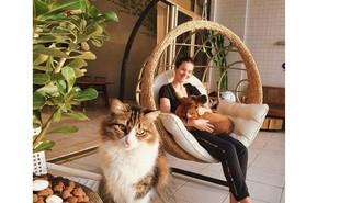 Camila Queiroz posa em sua varanda com balanço e móveis rústicos | Reprodução