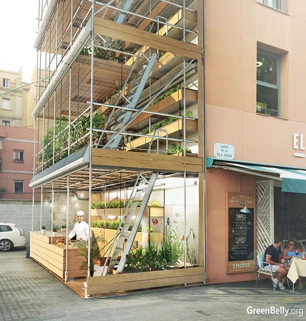 GreenBelly horta vertical (Foto: Reprodução)