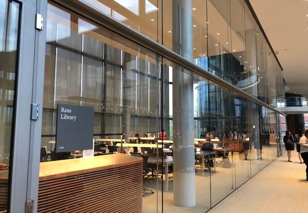Biblioteca Digital (Foto: Arquivo pessoal/Fernanda Lopes de Macedo Thees)