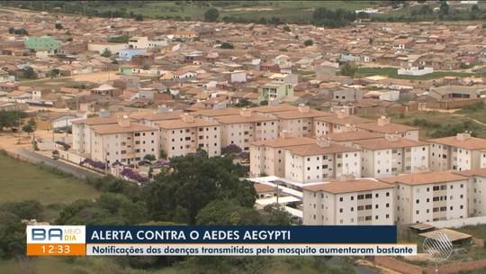 Cresce o número de notificações das doenças transmitidas pelo aedes aegypt em Conquista