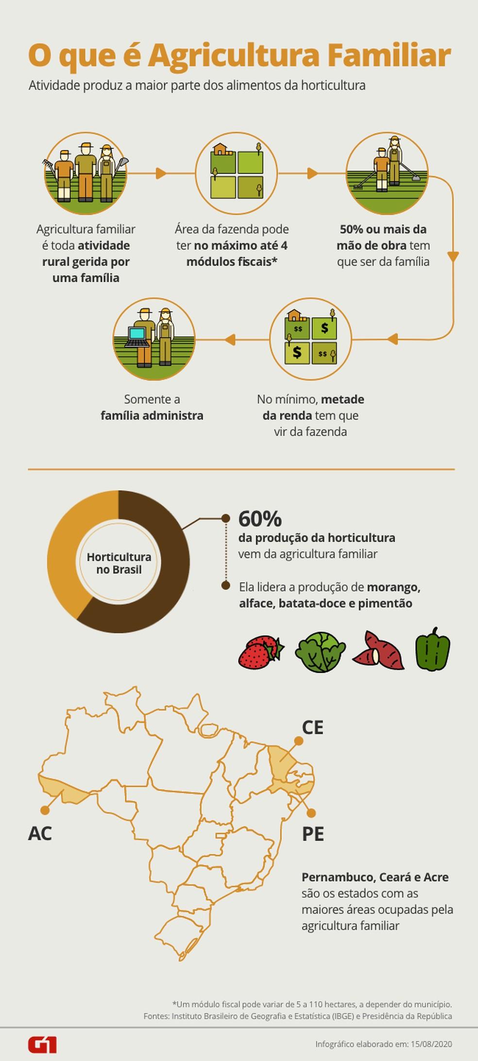 O que é Agricultura Familiar — Foto: Arte/G1