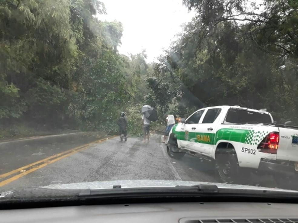 Barreira desliza na rodovia Rio-Santos em São Sebastião. — Foto: Gilberto Alves