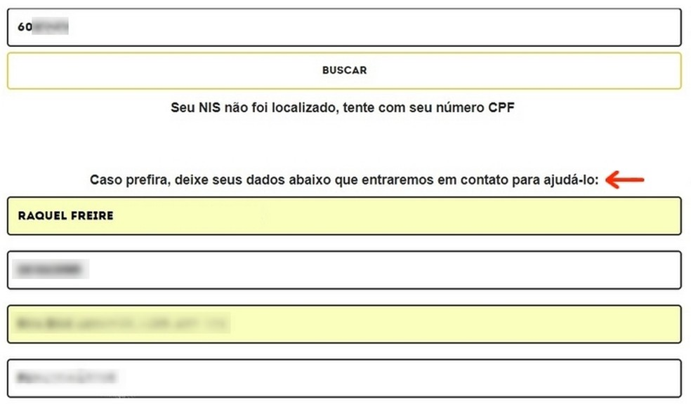 Formulário para que equipe do site Seja Digital entre em contato (Foto: Reprodução/Raquel Freire)