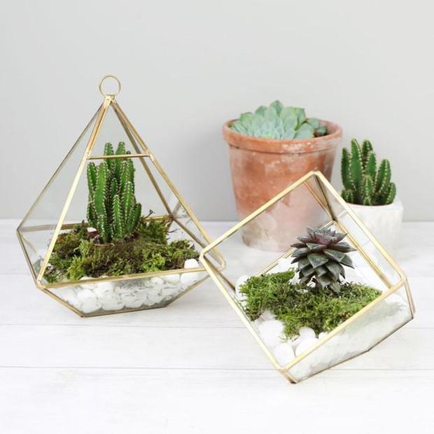 Lembrancinhas com plantas: Mini terrários (Foto: Pinterest/Reprodução)