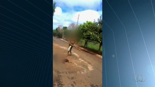 Idoso mata cachorro a pauladas em rua de Palminópolis, GO; veja vídeo