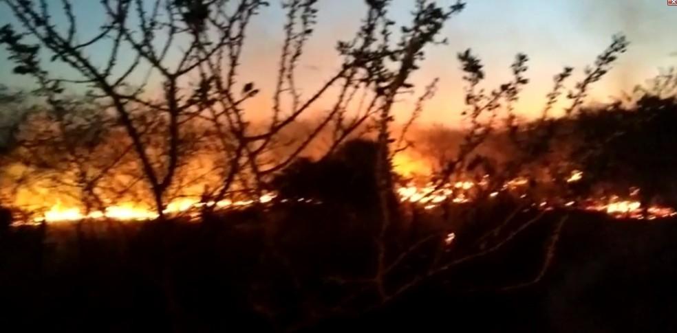Incêndio na Serra Pelada em Petrolina, PE — Foto: Êgly Pereira