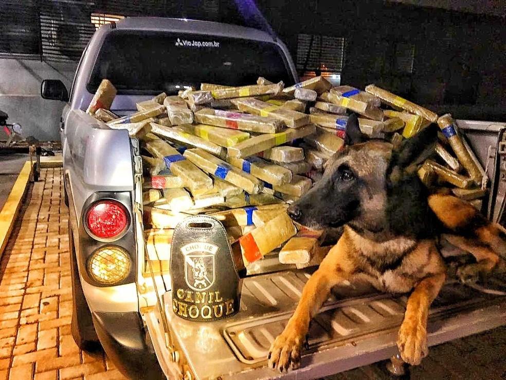 Drogas foram encontradas em fundo falso de caminhão  — Foto: Polícia Federal/Divulgação