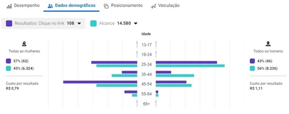 Estatísticas de desempenho de anúncio no Gerenciador de Anúncios do Facebook — Foto: Reprodução/Raquel Freire