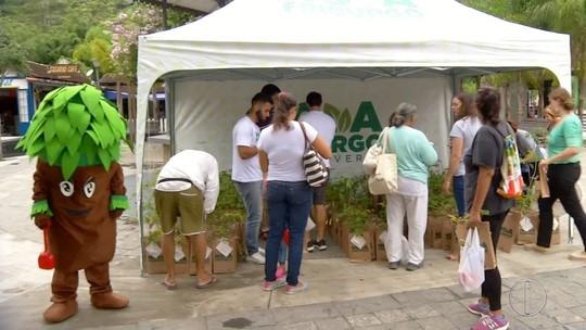 Veja como foi a 7ª ação do projeto 'Cidade Verde' na praça do distrito de Lumiar, em Nova Friburgo, no RJ