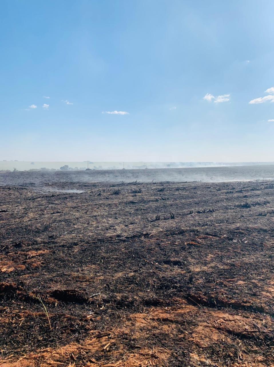 Incêndio queima área de vegetação equivalente a 224 campos de futebol na BR-452 próximo a Tupaciguara