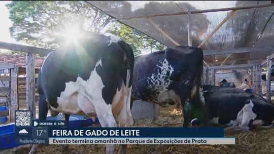 Feira em Prata apresenta novidades do setor leiteiro