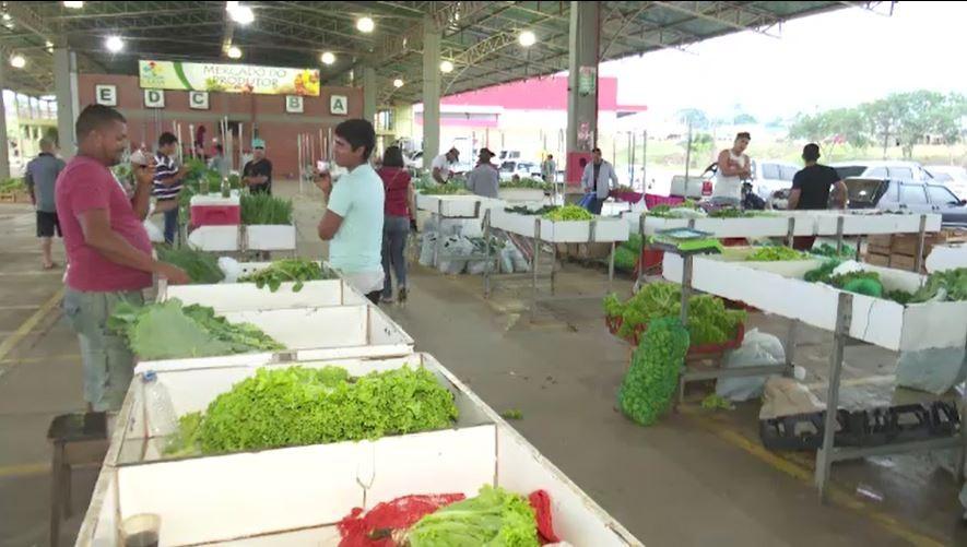Produtores de hortaliças relatam dificuldades com a falta de chuvas no AC - Notícias - Plantão Diário
