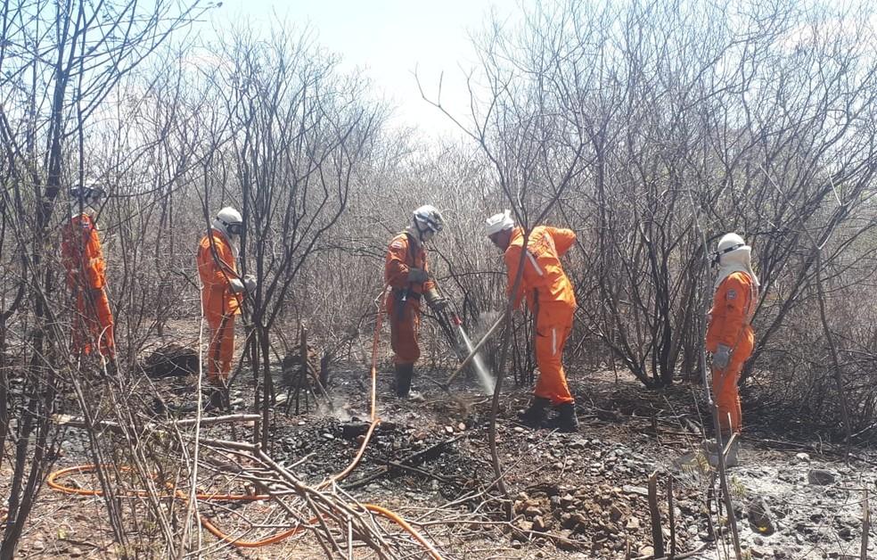 Incêndio é controlado em Abaré neste sábado (26) — Foto: Divulgação/Prefeitura de Abaré