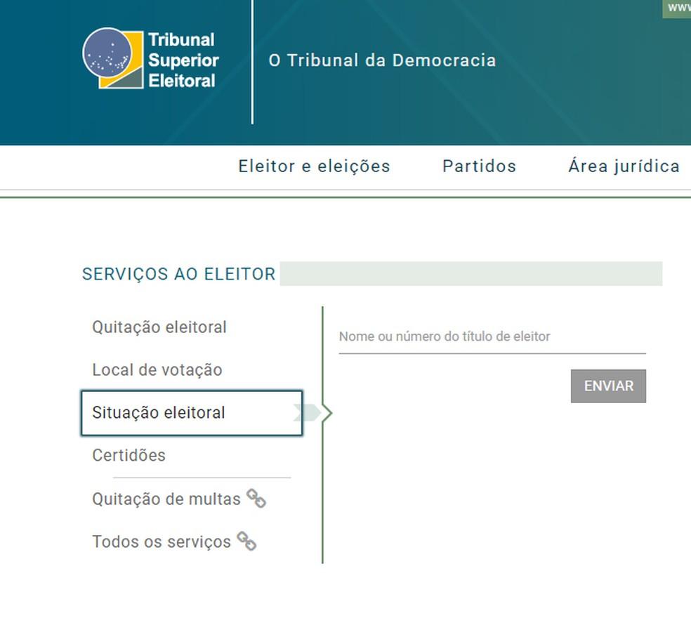 Consulta situação eleitoral no TSE (Foto: Reprodução/ TSE)
