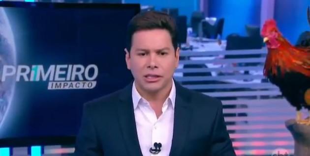 Marcão do Povo no 'Primeiro impacto', do SBT (Foto: Reprodução)