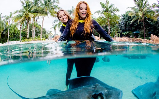 Ellen e a irmã, Iza Rocche no The Grand Reef